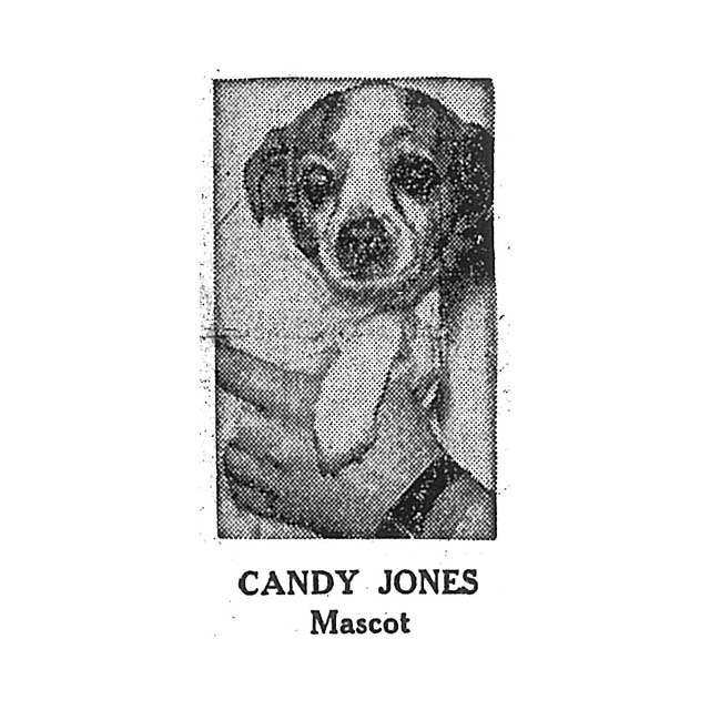 Candy Jones Mascot (dog)